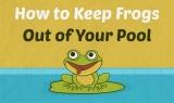 Comment éviter les grenouilles dans votre piscine