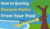 Du pollen dans votre piscine ? Eliminez-le en 5 étapes