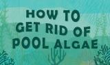 Comment se débarrasser des algues dans votre piscine